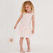 Baby Biscotti Navy Winter Bloom Bubble Dress