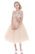 All Over Lace Dress,communion mississauga,communion dress mississauga,communion dress canada,communion dress ,veil,communion veil