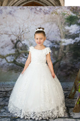 Princess Daliana Beaded Tulle Dress w/Embroidery