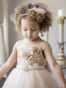 Princess Daliana Embroidered Dress w/Train